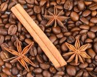ραβδιά αστεριών καφέ κανέλ&alp στοκ φωτογραφία