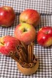 Ραβδιά μήλων και κανέλας Στοκ Εικόνα
