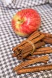 Ραβδιά μήλων και κανέλας Στοκ εικόνες με δικαίωμα ελεύθερης χρήσης