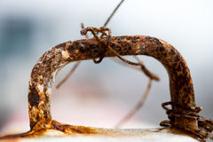 Ραβδιά στεφανών σιδήρου σκουριάς στο τσιμέντο Στοκ εικόνες με δικαίωμα ελεύθερης χρήσης