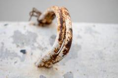 Ραβδιά στεφανών σιδήρου σκουριάς στο τσιμέντο Στοκ φωτογραφία με δικαίωμα ελεύθερης χρήσης