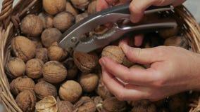 Ραγίζοντας ξύλα καρυδιάς για την κατανάλωση απόθεμα βίντεο