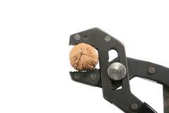 ραγίζοντας ξύλο καρυδιάς Στοκ εικόνες με δικαίωμα ελεύθερης χρήσης