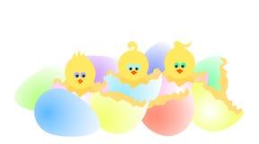 ραγισμένα αυγά Στοκ φωτογραφίες με δικαίωμα ελεύθερης χρήσης