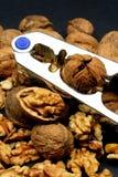 ραγισμένα καρύδια καρυοθραύστης Στοκ εικόνα με δικαίωμα ελεύθερης χρήσης