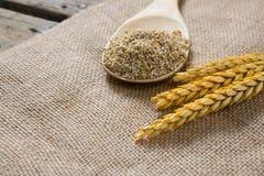 Ραγισμένα σιτάρι δημητριακά με το κριθάρι στοκ φωτογραφία με δικαίωμα ελεύθερης χρήσης