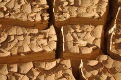 ραγισμένη λάσπη Στοκ Εικόνες