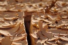 ραγισμένη λάσπη Στοκ εικόνες με δικαίωμα ελεύθερης χρήσης