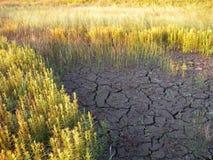 ραγισμένη λάσπη Στοκ φωτογραφία με δικαίωμα ελεύθερης χρήσης