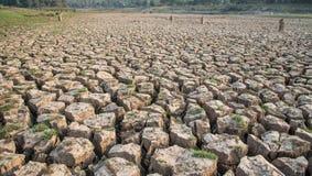 Ραγισμένη γη, ξηρασία, στεριά, ξηρό δέντρο, ξηρό φράγμα Στοκ εικόνες με δικαίωμα ελεύθερης χρήσης