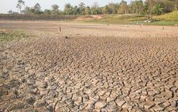 Ραγισμένη γη, ξηρασία, στεριά, ξηρό δέντρο, ξηρό φράγμα Στοκ εικόνα με δικαίωμα ελεύθερης χρήσης
