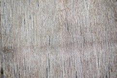 Ραγισμένη κοντραπλακέ σύσταση Στοκ εικόνα με δικαίωμα ελεύθερης χρήσης