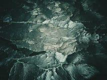 ραγισμένη παλαιά σύσταση δέρματος Στοκ εικόνες με δικαίωμα ελεύθερης χρήσης