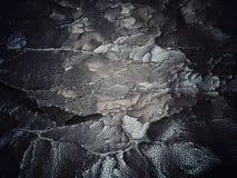 ραγισμένη παλαιά σύσταση δέρματος Στοκ Φωτογραφίες