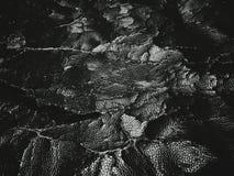 ραγισμένη παλαιά σύσταση δέρματος Στοκ Φωτογραφία