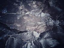 ραγισμένη παλαιά σύσταση δέρματος Στοκ φωτογραφία με δικαίωμα ελεύθερης χρήσης