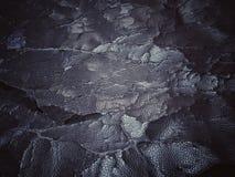 ραγισμένη παλαιά σύσταση δέρματος Στοκ φωτογραφίες με δικαίωμα ελεύθερης χρήσης