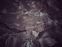 ραγισμένη παλαιά σύσταση δέρματος Στοκ Εικόνα