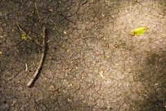 Ραγισμένη σύσταση στο ξηρό χώμα με το ξηρό ξύλινο ραβδί Στοκ Εικόνες