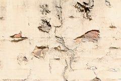 Ραγισμένοι τοίχος και ασβεστοκονίαμα Στοκ εικόνα με δικαίωμα ελεύθερης χρήσης