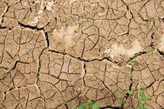 ραγισμένος ανασκόπηση dof ξηρός γήινος ρηχός επάνω σύσταση της γης με τις ρωγμές Στοκ φωτογραφίες με δικαίωμα ελεύθερης χρήσης