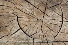 Ραγισμένος ξύλινος πίνακας Στοκ Εικόνες