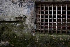Ραγισμένος Mossy τοίχος με τα σκουριασμένα δικτυωτά πλέγματα Στοκ φωτογραφία με δικαίωμα ελεύθερης χρήσης