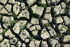 ραγισμένο έδαφος Στοκ Εικόνες