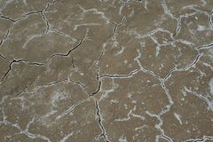 Ραγισμένο αλατούχο χώμα Στοκ εικόνες με δικαίωμα ελεύθερης χρήσης