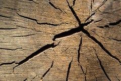 Ραγισμένο μέσο τμήμα του ξύλου Στοκ Εικόνες