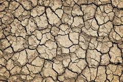 ραγισμένο ξηρό έδαφος ξηρα&sig Στοκ Εικόνες