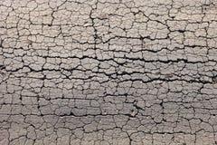 Ραγισμένο ξηρό έδαφος Στοκ Φωτογραφίες