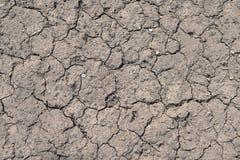 Ραγισμένο ξηρό γκρίζο έδαφος, σύσταση Στοκ Φωτογραφίες