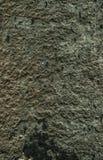 Ραγισμένο παλαιό υπόβαθρο τοίχων πετρών, σύσταση πετρών grunge κοντά επάνω Στοκ φωτογραφία με δικαίωμα ελεύθερης χρήσης