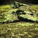 Ραγισμένο τσιμεντένιο πάτωμα καναλιών Στοκ Εικόνα