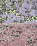 ραγισμένο χρώμα Στοκ Φωτογραφίες