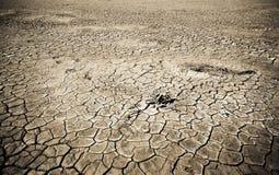 ραγισμένο χώμα ερήμων Στοκ εικόνα με δικαίωμα ελεύθερης χρήσης