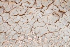Ραγισμένο χώμα και αποφλοίωση Στοκ Εικόνα
