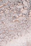 Ραγισμένο χώμα και αποφλοίωση Στοκ φωτογραφία με δικαίωμα ελεύθερης χρήσης