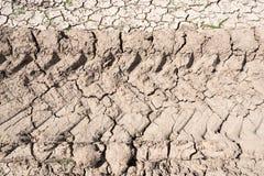 ραγισμένο χώμα Στοκ φωτογραφίες με δικαίωμα ελεύθερης χρήσης