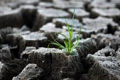 ραγισμένο χώμα Στοκ Φωτογραφία