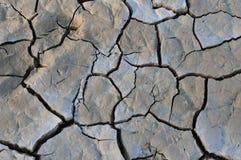 ραγισμένο sossusvlei της Ναμίμπια λάσπης Στοκ φωτογραφία με δικαίωμα ελεύθερης χρήσης