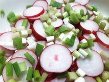 Ραδίκια περικοπών και κρεμμύδι άνοιξη για τη σαλάτα στοκ εικόνες με δικαίωμα ελεύθερης χρήσης