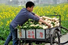 ραδίκια pengzhou αγροτών της Κίνα&si Στοκ εικόνες με δικαίωμα ελεύθερης χρήσης