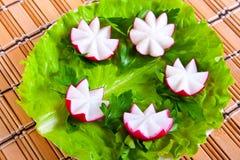 ραδίκι μαρουλιού μορφής λουλουδιών Στοκ Εικόνα