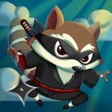 Ρακούν KungFu Ninja! Στοκ εικόνες με δικαίωμα ελεύθερης χρήσης