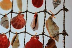 Ραπτική, ένα προϊόν για το εσωτερικό του θαλασσινού κοχυλιού στοκ φωτογραφίες με δικαίωμα ελεύθερης χρήσης