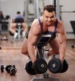 Ραχιαίοι μυ'ες workout στοκ εικόνες