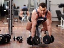 Ραχιαίοι μυ'ες workout στοκ φωτογραφία με δικαίωμα ελεύθερης χρήσης