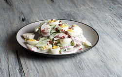 Ραδίκι - αγγούρι - σαλάτα αυγών ορτυκιών, πιάτο πορσελάνης, γκρίζο υπόβαθρο Στοκ Φωτογραφίες
